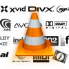"VLC 2.0 ""Twoflower"" disponibile per il download"